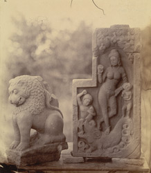Portion of a lion capital and a statue of Ganga, from Beshnagar, Bhopal State